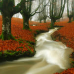 inspiring-examples-of-nature-photography-01